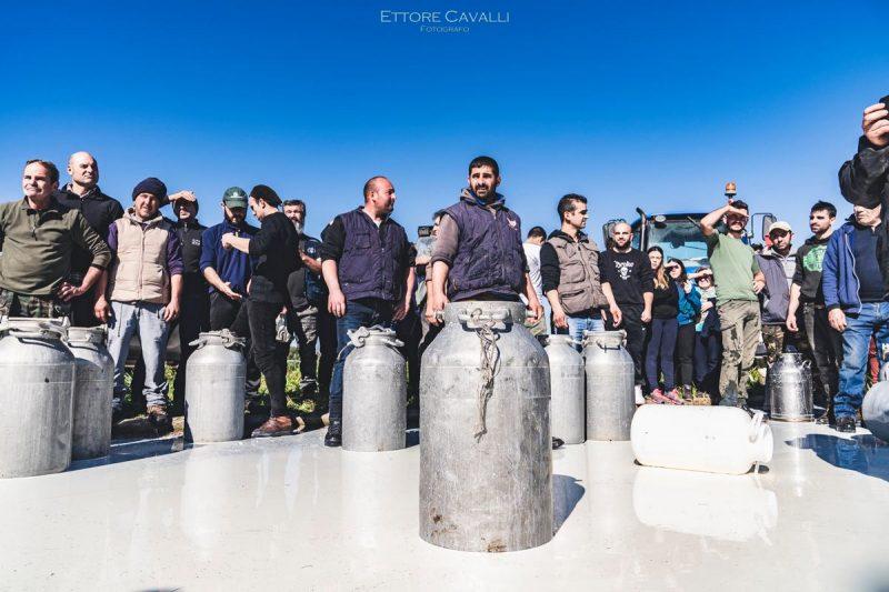 Sardinian shepherds throwing away milk in protest