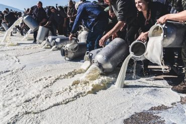 Sardinian shepherds' protest against milk low price