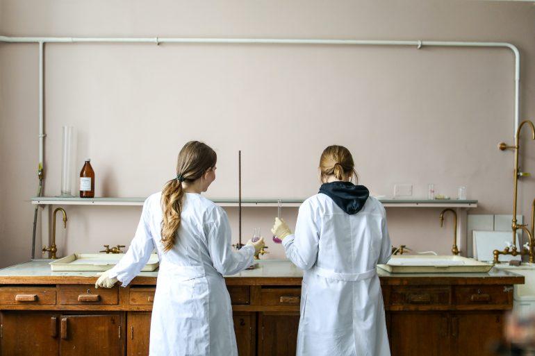 new graduates university students work experience